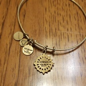 Compass by alex and ani